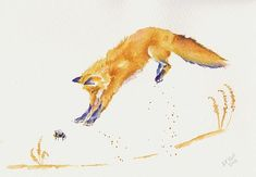 "Fine Artist Debra Hall's watercolor painting of ""Jump"" featuring a playful fox. http://fineartamerica.com/featured/jump-debra-hall.html"