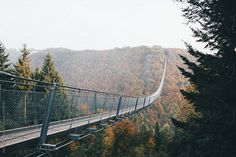 Bridge in the middle of nature by Jovana Rikalo - Bridge, Nature - Stocksy United Scary Places, The Middle, Bridge, The Unit, Stock Photos, Architecture, Nature, Spooky Places, Arquitetura