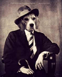 Dog-art-beagle-collage-anthropomorphic