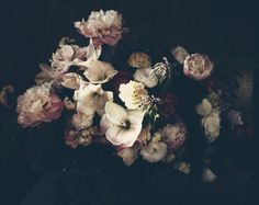 inspiration | dutch love | via: ashley woodson bailey