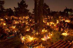 fiori e candele portati dai parenti dei defunti nel cimitero di San Gregorio, Messico
