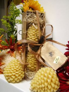 Pure Beeswax candles in gift box PInecones by carusohoney on Etsy, $12.95