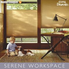 Even if you are a morning person, it's impossible to get work done with the sun in your eyes. Need help designing your home office? Contact us today!