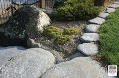 Schist Stone Alpine Garden Edge, Schist decoration, Schist Walling, Schist cladding, Premier Schist Stone Alpine Garden, Stone Supplier, Garden Edging, Garden Stones, Auckland, Concept, Outdoor Decor, Design, Stones For Garden
