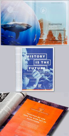 University of Florida College Brochure, Corporate Brochure, Ed Design, Book Design, Wilkes University, French Hospital, Web Design Quotes, Higher Education, Education Today