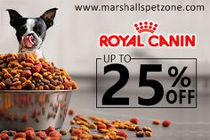 Bright Day Bright Offer!! Royal Canin Food For Your Pet @ Up to 25% OFF. Enjoy Free Food Samples And Rs. 250 Voucher On Every Order You Make. T&C Apply* Best Dry Dog Food, Food Banner, Pet Pet, Pet Food, Pet Care, Dog Food Recipes, Pets, Productivity, Pet Food Direct