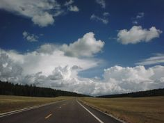 Yellowstone. The road went on forever. 2007. taken by: Me