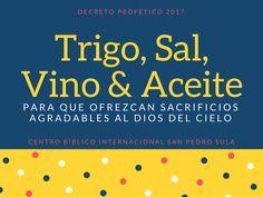 Decreto Profético 2017 :: Mucho Más abundantemente!  Centro Bíblico Internacional San Pedro Sula 31 de Diciembre 2016 7 PM  Colegio Médico Col. Stibys