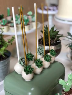 Savory cakes without measuring - Clean Eating Snacks Havanna Party, Magnum Paleta, Cactus E Suculentas, Succulent Cupcakes, Cactus Cake, Baby Shower Cake Pops, Cookie Pops, Party Treats, Wedding Desserts