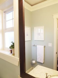 Paint Color - Martha Stewart Rain Water - lovely for a bathroom - really like this pallet