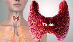 alimenti che regolano la tiroide