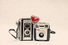 Photography Lovin'