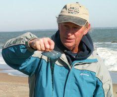 Explore Tybee Beach Ecology
