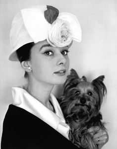 thefashionofaudrey:  The actressAudrey Hepburn photographed with Mr. Famous by Cecil Beatonin her suite at theHotel Hassler(atPiazza Tr...