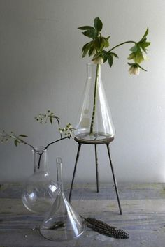 Above: We like the use of lab flask as a vase; the Erlenmeyer Flask (2000 mL) is $32.29 at The Grape and Granary. For a laboratory-inspired vase with a more organic feel, consider CB2's Lab Vase; currently $3.95. Photo via Etsy seller Ethan Ollie.