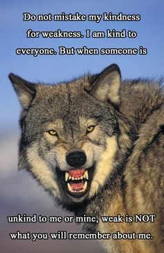"I truly believe this as I read a book called ""Lone Wolf"". Please read it to get all the insight into wolves. Wisdom Quotes, True Quotes, Great Quotes, Inspirational Quotes, Wolf Spirit, My Spirit Animal, Lone Wolf Quotes, Wolf Qoutes, Angry Wolf"