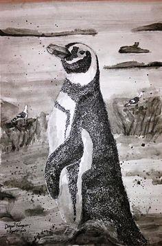 Pinguino Magallanico