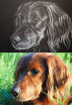 Portraits From Photos, Pet Portraits, Hand Drawn, How To Draw Hands, Vibrant, Pencil, Hand Painted, Watercolor, Ink