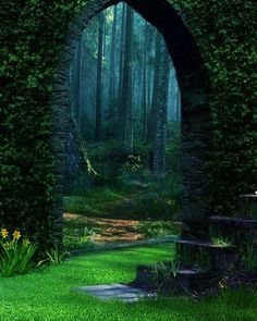 Forest Portal - The Enchanted Wood