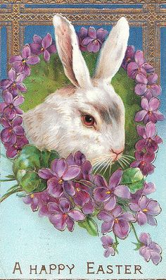 Victorian Easter Bunny with Violets Postcard