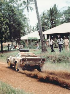 Lancia Stratos in Africa Vintage Racing, Vintage Cars, Turin, Pajero Off Road, Lancia Delta Integrale, Off Road Racing, Motosport, Chasing Cars, Sweet Cars