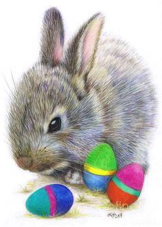 Easter Bunny Eggs, Easter Art, Hoppy Easter, Easter Crafts, Easter 2014, Bunnies, Bunny Drawing, Bunny Art, Easter Illustration
