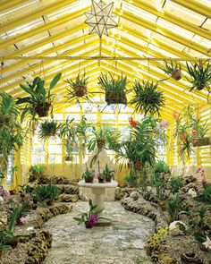 Yellow Greenhouse  An orchid greenhouse with more than 3,000 specimens is given a bright coat of yellow.