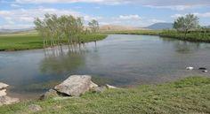 VAN ÇALDIRAN - Van Çaldıran'daki Kaz Gölü