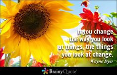 If you change the way you look at things, the things you look at change. - Wayne Dyer - BrainyQuote