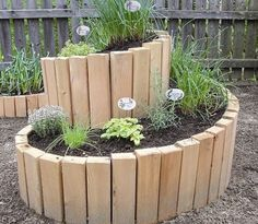raised bed herb spiral- this is Awesome! Want the spiral in my landscaping!