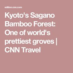 Kyoto's Sagano Bamboo Forest: One of world's prettiest groves | CNN Travel