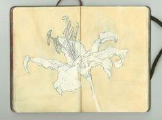 Thomas de beer | moleskin sketch 2011