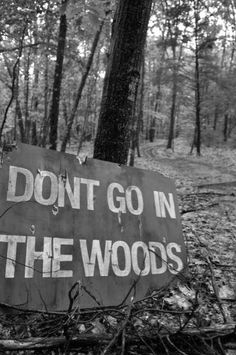 I look over at the warning sign. 'Dont go into the woods.' I scoff. What could be in there that's SO bad? I walk in and look up at the trees. Nothing out of the ordinary. I look to my left and see a pair of glowing eyes in the bushes. I scream and back away (Open rp)