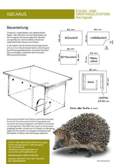 Nesting boxes for mammals: Owl and bird of prey station Haringsee - Vogelkasten - gartenbedarf Vertical Vegetable Gardens, Indoor Vegetable Gardening, Container Gardening, Small Room Interior, Hedgehog House, Chicken Tractors, Bird Houses Diy, Potager Garden, Worm Composting