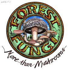 Forest Fungi specialise in gourmet mushroom cultivation courses, teaching beginners to advanced. Forest Fungi deliver online and face to face courses teaching how to grow gourmet mushrooms. Mushroom Kits, Mushroom Cultivation, Fungi, Stuffed Mushrooms, Organic, Teaching, Face, Gourmet, Stuff Mushrooms