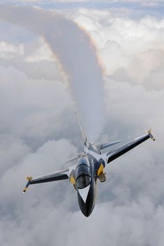 T-50B Golden Eagle trainer aircraft of the ROK Air Force Black Eagles aerobatic team