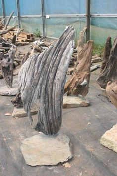 Surrey Driftwood for sale - Suppliers of Architectural Driftwood Sculptures