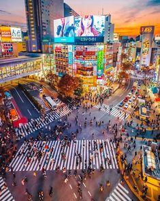 Japon Tokyo, Shinjuku Tokyo, Shibuya Tokyo, Tokyo City, Tokyo Travel Guide, Tokyo Japan Travel, Go To Japan, Japan Trip, Aesthetic Japan