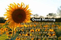 Hindi Shayari Good Morning Images Pics for Best Friends Morning Images In Hindi, Latest Good Morning, Hindi Good Morning Quotes, Cute Good Morning, Shayari Photo, Shayari Image, Shayari In Hindi, Hindi Quotes, Special Massage