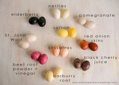 Natural Easter Egg Dyes- A Comprehensive Visual Guide by Emily Weaver Brown Photography.  A blast to do with the kids, but also might have to try it on fabric.