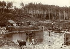 Building the hydroelectric dam across the Blindman River where it enters Red Deer (Burbank) 1904 Red Deer, AB Red Deer, Historical Photos, Small Towns, The Past, River, Building, Wood, Outdoor, Vintage
