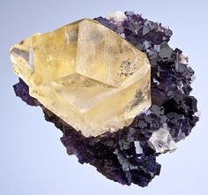 Very rare specimen of twinned Yellow Calcite crystals on Purple Fluorite!  ...the Calcite twin is in excellent condition with lustrous surfaces and a gemmy internal glow! The Fluorite consists of purple cubes on matrix and  they offer the perfect contrasting backdrop. A rare opportunity for Fluorite collectors alike!  From Melchor Muzquiz, Mun. de Melchor Muzquiz, Coahuila, Mexico