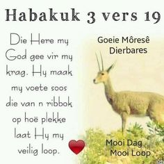 Good Morning Prayer, Morning Prayers, Good Morning Wishes, Good Morning Quotes, Bible Prayers, Bible Scriptures, Afrikaanse Quotes, Goeie More, Messages