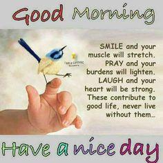 103 Best Good Morning Images Good Morning Morning Blessings Good