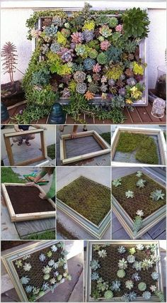 Cool Succulent Planter Ideas for Your Home 610 Cool Succulent Planter Ideas for Your Home 6 Plant Wall Art Artificial Plant Succulent Wall Art Succulent Wall Planter, Succulent Frame, Vertical Succulent Gardens, Diy Planters, Planter Ideas, Succulent Gardening, Succulent Ideas, Concrete Planters, Succulent Tattoo