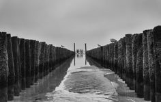 November Tristesse von Georgie_Pauwels - Foto Galerie - c't Fotografie