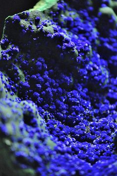 """Azurite & Malachite, Guichi, Anhui, China.Seen in """"Terra Mineralia"""", one of the largest collections of minerals in the world."""