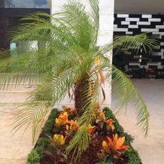 Casa Z-26. Jardín pequeño en acceso: Jardines de estilo Moderno por EcoEntorno Paisajismo Urbano