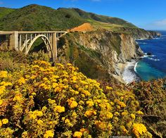Big Sur, California. Gotta be one of my favorite places on earth. Can't wait to go back.