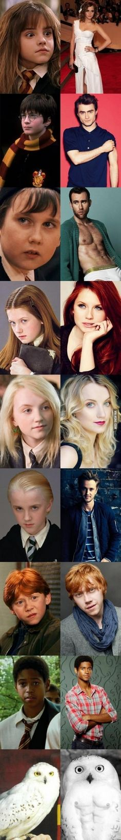 Everyone in Harry Potter has changed even hedwig (i'm pretty sure that hedwig's a girl